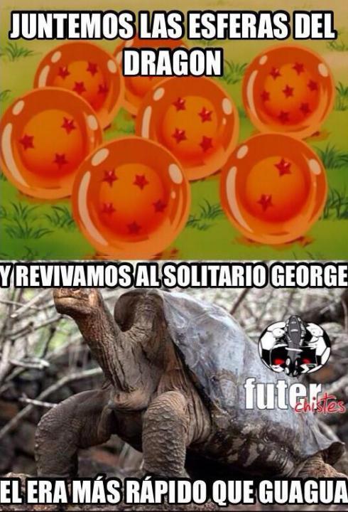 memes_convocatoria_06