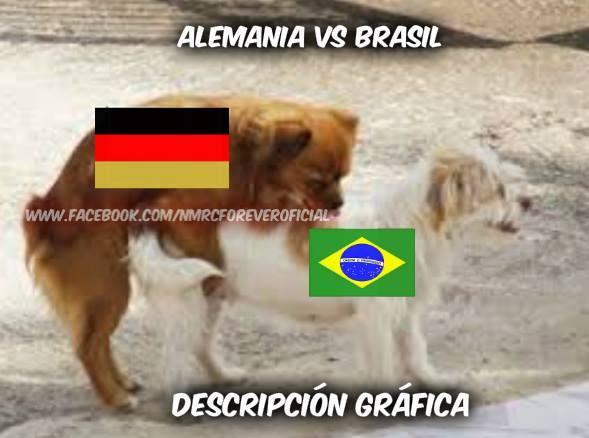 meme_brasil_alemania_13