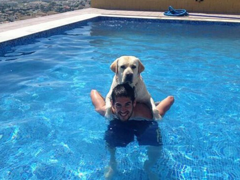 perro_alarcon_messi